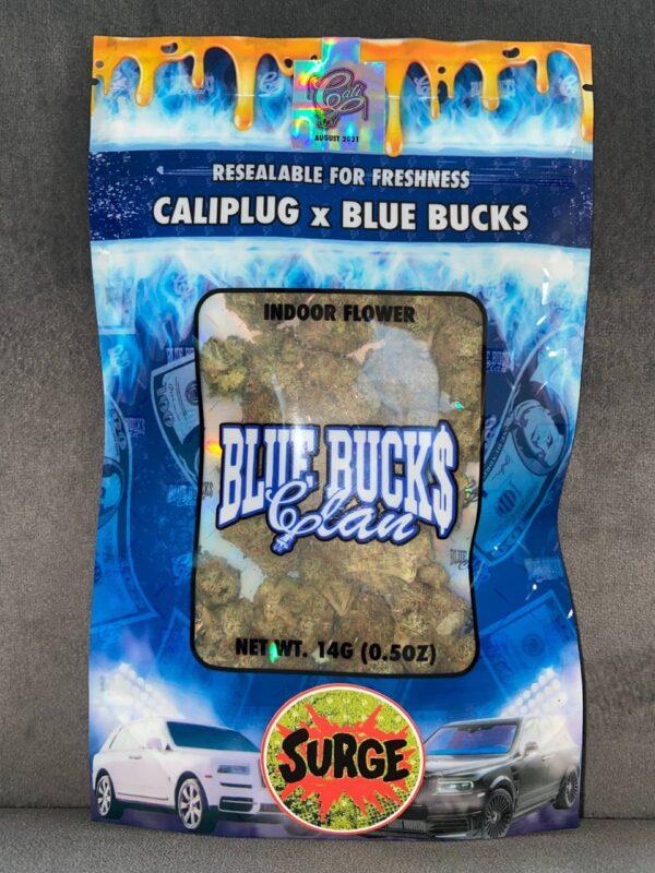 caliplug blue bucks surge